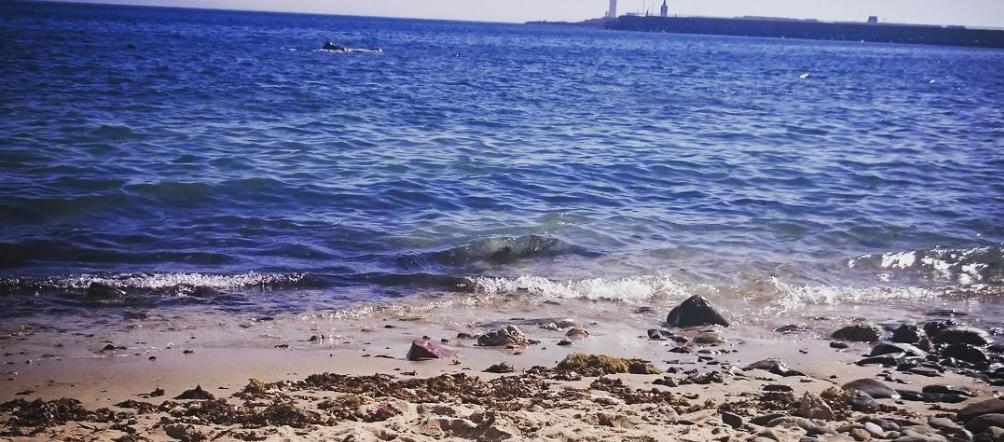 Orilla y mar en la Playa de la Caleta en Tarifa