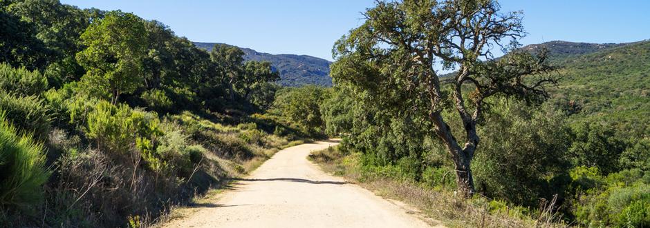 El Parque de los Alcornocales está en Cádiz (Andalucía)